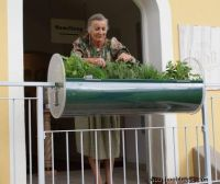 Balkonkraeutergarten_Eva_1_Buttazoni_Andreas_Giselbrecht_Riefensberg
